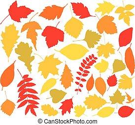autunno, silhouette, vettore, foglie