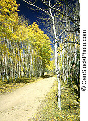 autunno, splendore