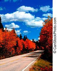 autunno, strada