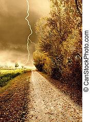 autunno, tempesta, parco
