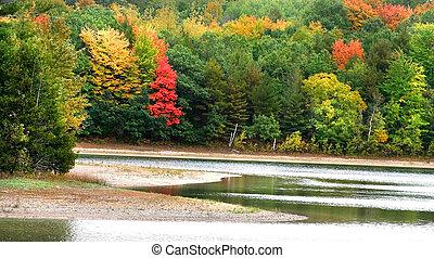 autunno, tempo