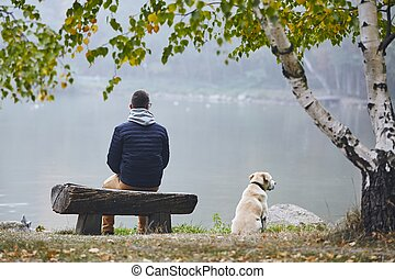 autunno, uomo, cane, natura