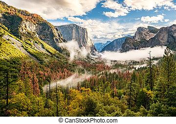 autunno, valle, yosemite, nuvoloso, mattina