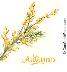 autunno, verde, bacche, giallo, ramo, foglie