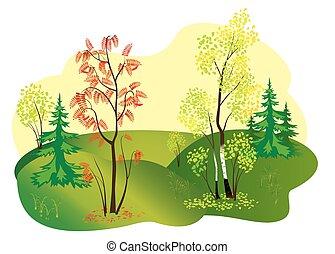 autunno, vettore, illustrazione, natura