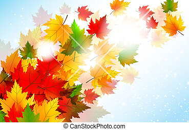autunno, vibrante, foglia, acero, fondo