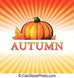autunno, zucca, fogli caduta, raggi, v