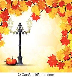 autunno, zucche, parco