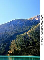 Avalanche path at Emerald Lake, Yoho National Park, Canada -...