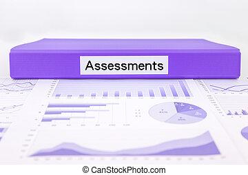 avaliação, documentos, gráficos, gráficos, e, sumário,...