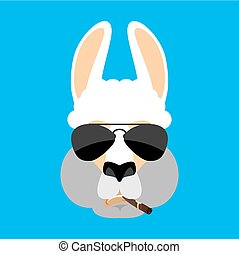 avatar., lama, alpaga, emoji., cigare, strict., illustration, figure, bête, vecteur, animal, sérieux, fumer, frais