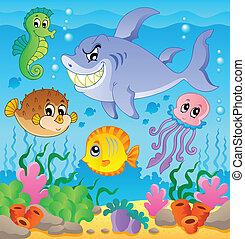 avbild, tema, 3, undervattens