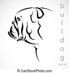 avbild, vektor, (bulldog), hund