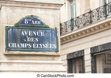 Avenue des Champs-?lys?es sign on the famous street in Paris...