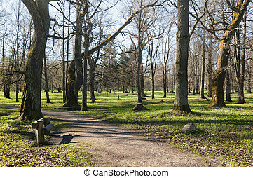 Avenue in park Kadriorg, in the early spring