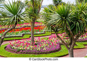 Avenue in the city park, colorful flowers, exotic plants, resting place