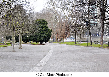 avenue in the park