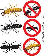 avertissement, -, termite, signes