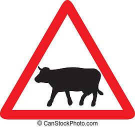 avertissement, trafic, vache, signe