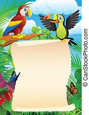 aves, con, muestra en blanco