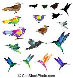 aves, conjunto