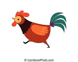 aves de corral, plumaje, corriente, granja, ilustración, ...