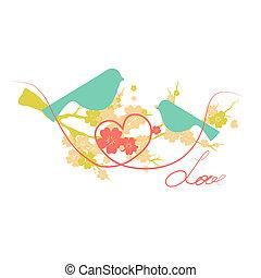 aves, diseño