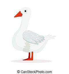 aves domésticas, doméstico, ilustração, vetorial, ganso, branca, criando