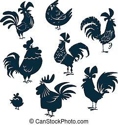 aves domésticas, galinha, set., galinha, cobrança, silhuetas, vetorial, galos