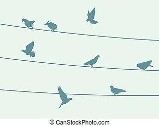 aves, en, alambre