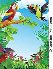 aves, en, el, bosque