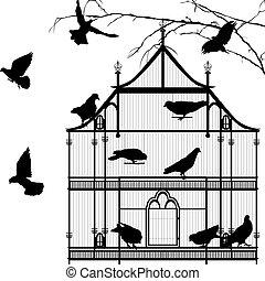 aves, y, jaula, gráfico