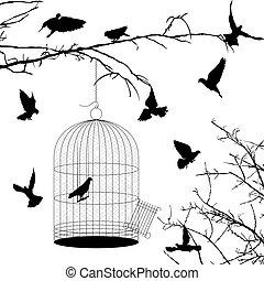 aves, y, jaula, siluetas