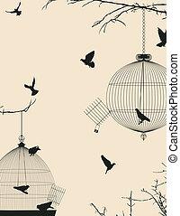 aves, y, jaulas de pájaros, postal