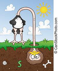 avestruz, cabeça, em, a, chão, caricatura