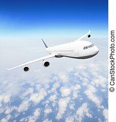 avião, em, mosca