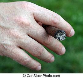 avide, smoker's, cigare, main, quoique, tenue