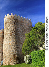 Avila Castle Walls Cityscape Castile Spain - Walls Castle ...