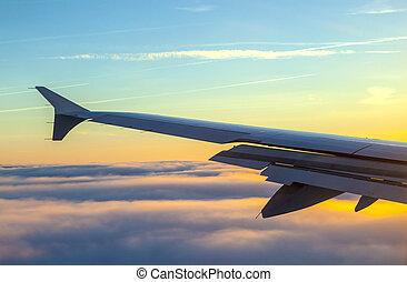 avion, ailes, levers de soleil