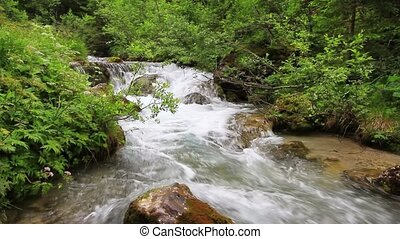 Avisio stream in Fassa Valley - Avisio stream in Val di...