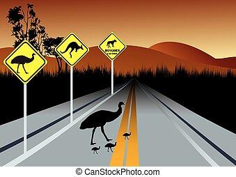 aviso,  Austrália, animais, estrada, sinais