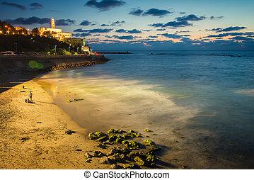 aviv, ∥電話番号∥, 海岸