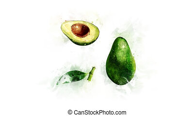 Avocado painted in watercolor - The appearance of a...