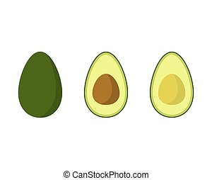 Avocado vector illustration isolated on white background