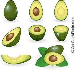 Avocado - Vector illustration of avocado