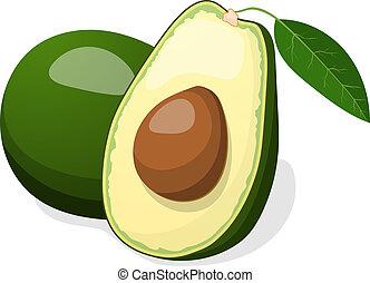 avocado, vector, vrijstaand, op wit, achtergrond.
