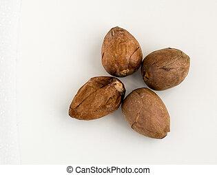 avocado, vrijstaand, vier, zaden, achtergrond, witte