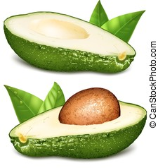 Avocados with core vector illustration - Avocados with core ...
