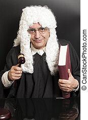avocat, juge, livre, tenue, marteau, portrait, mâle