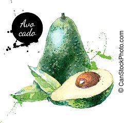 avokado, hand, vattenfärg, frukt, bakgrund, oavgjord, vit, ...